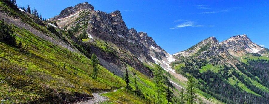 Kurz vor Kanada auf dem Pacific Crest Trail
