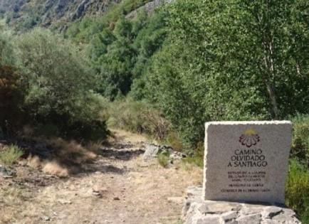 """""""Camino Olvidado"""